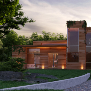 3D Rendering of houses